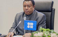 Barkindo: OPEC+ has encouraging signs of rising conformity