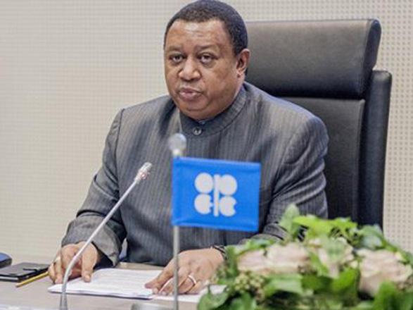 Barkindo: OPEC+ has encouraging signs of rising conformity