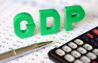 Kazakhstan sees 3.5 pct GDP growth since New Year