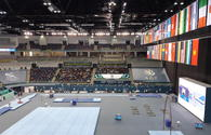 Winners of FIG Artistic Gymnastics World Cup in horizontal bar exercises named