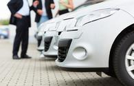 Population's interest in local cars shows growth