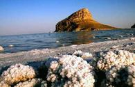 Conditions created for cultivation of artemia in Iran's Lake Urmia