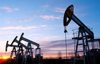 Tajikistan produces 3,700 tons of oil since beginning of year