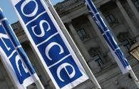 OSCE welcomes efficient organization of elections in Kazakhstan