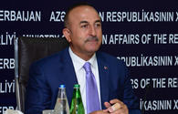 "Cavusoglu criticizes Macron's decision regarding so-called ""Armenian genocide"""