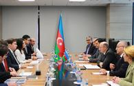 Azerbaijan invites Brazilian companies to participate in renewable energy