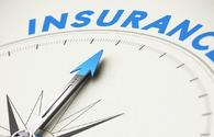 Local insurance market may grow significantly by year end