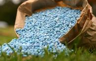 Agro Service: Azerbaijan has no shortage in fertilizers