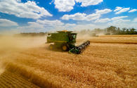 Grain harvest volumes disclosed