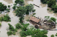 7 killed, 1.5 mln people affected by floods in India's Assam as new areas inundated
