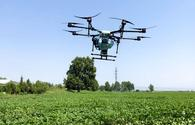 "Drone for killing pests in cotton field used for first time <span class=""color_red"">[PHOTO]</span>"