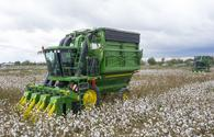 Country expects high cotton crop