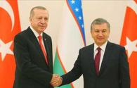 Turkish, Uzbek presidents discuss joint investment projects in Baku