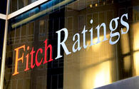 Fitch's forecast 14.9 pct inflation in Uzbekistan in 2019