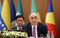 FM: Bringing NAM activity in line with new realities - one of important tasks