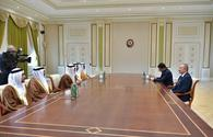 "Azerbaijani president receives delegation led by UAE minister of state for foreign affairs <span class=""color_red"">[PHOTO]</span>"