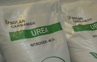 Exports of local urea to Latin America launched