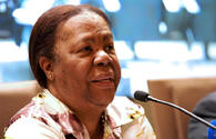 South African minister: Necessary to strengthen global system based on int'l law