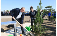 "President Ilham Aliyev and First Lady Mehriban Aliyeva attended tree-planting campaign in Khatai district <span class=""color_red"">[PHOTO]</span>"