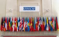 OSCE PA President says Nagorno- Karabakh painful conflict for Europe