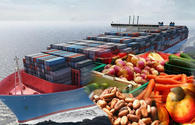 Iran boosts non-oil exports by 20 pct