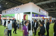 "Azerbaijan presents its tourism opportunities in India <span class=""color_red"">[PHOTO]</span>"