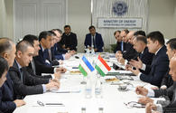 Tajikistan, Uzbekistan to build two joint hydropower plants