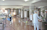 Food-processing ventures to open in Kazakhstan's Shymkent