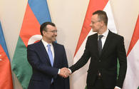 Hungary to start importing Azerbaijan's gas in 2023