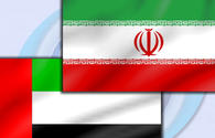 Iranian official urges boosting economic ties with UAE