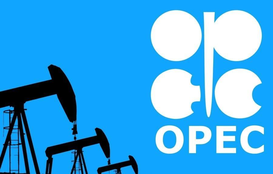 Oil rises further above $26 as OPEC+ begins record cuts