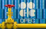 Azerbaijan not to increase oil production until OPEC+ agreement expiry
