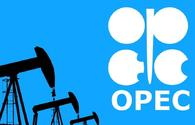Azerbaijani Energy Ministry highly appreciates decision of ministers at OPEC and non-OPEC Ministerial Meeting