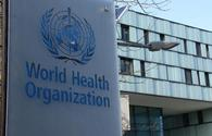 WHO talks collaboration with Uzbekistan's Ministry of Health amid COVID-19