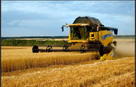 Azerbaijan unveils data on harvesting of cereals as of June 18