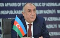 FM highlights Azerbaijan's role in global fight against COVID-19