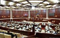 Azerbaijani parliament voices appeal to government due to France