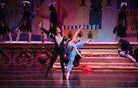 """Arabian Nights"" captivate ballet lovers in Vienna"