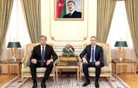 "Azerbaijan, Serbia mull cooperation in fight against organized crimes <span class=""color_red"">[VIDEO]</span>"