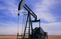 Prices of Azerbaijani oil rebound
