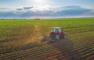 Azerbaijan's agricultural enterprises increase revenues