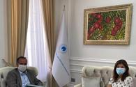 Turkic Culture and Heritage Foundation expands ties with Hungary