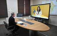 Azerbaijani, Sweden MFAs hold talks via video-conference