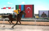 "Country's best jockeys awarded in Baku <span class=""color_red"">[PHOTO/VIDEO]</span>"