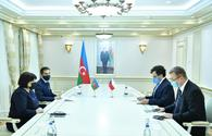 Political, economic relations between Azerbaijan and Czech Republic remain at high level