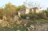 Monitoring of historical monuments in Azerbaijan's liberated lands continues