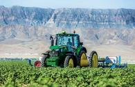 Azerbaijan announces date for payment of subsidies to farmers