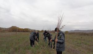 "Tree-planting campaign continues in Azerbaijan's Gubadli <span class=""color_red"">[PHOTO]</span>"