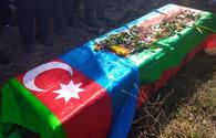 Public to be provided with detailed information about martyrs - Azerbaijani MoD