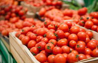 Azerbaijan boosts tomatoes export in Jan-Nov 2020
